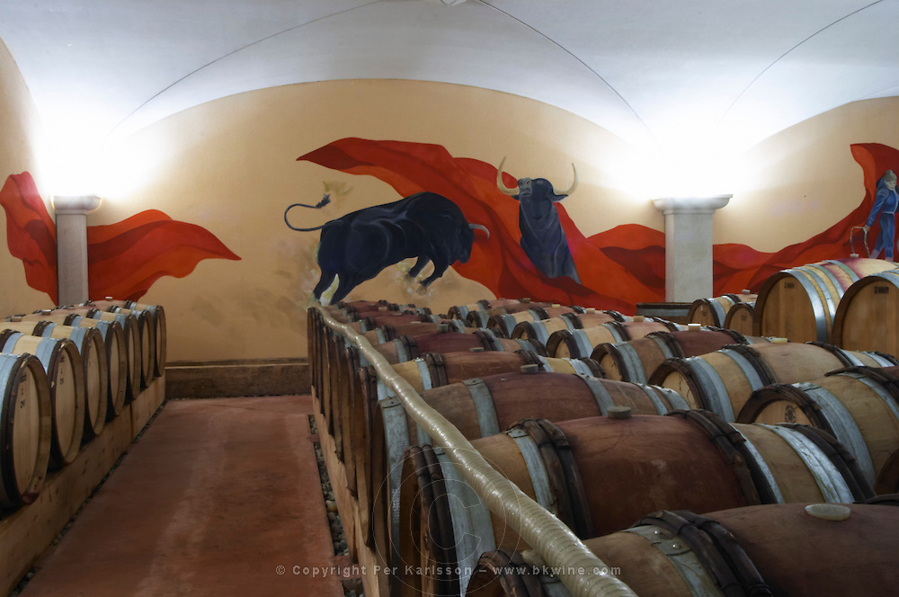 barrel aging cellar bull fight wall painting domaine gilles robin crozes hermitage rhone france