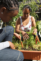 Mother and daughter looking at carrots in vegetable patch. Cleared for Mental Health issues.