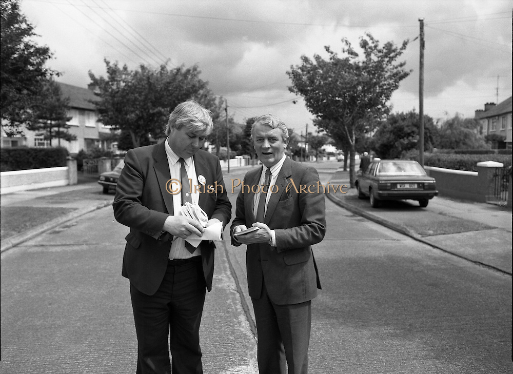Austin Currie Canvas In Palmerstown (T1)..1989..07.06.1979..06.07.1989..7th June 1989..In the general election The Fine Gael Party chose Mr Austin Currie to contest for a seat in Dail Eireann. Well known as a civil rights activist and peace campaigner Mr Currie hoped to win a seat alongside running mate Mr Jim Mitchell.Mr Currie previously held a seat in the Northern Ireland Executive and held a position as Minister for Housing and Local Planning. Mr Currie is a founder member of the S.D.L.P...Image shows Mr Austin Currie with Mr Tom Kavanagh, Chairman,Dublin West Fine Gael on the campaign trail in Palmerstown.