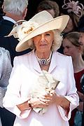 """Koning Willem Alexander wordt door Hare Majesteit Koningin Elizabeth II geïnstalleerd in de 'Most Noble Order of the Garter'. Tijdens een jaarlijkse ceremonie in St. Georgekapel, Windsor Castle, wordt hij geïnstalleerd als 'Supernumerary Knight of the Garter'.<br /> <br /> King Willem Alexander is installed by Her Majesty Queen Elizabeth II in the """"Most Noble Order of the Garter"""". During an annual ceremony in St. George's Chapel, Windsor Castle, he is installed as """"Supernumerary Knight of the Garter"""".<br /> <br /> Op de foto / On the photo: Camilla Parker Bowles"""