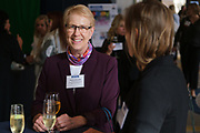 Dorene Novotny of Foothill-De Anza Community College District talks with others during the Silicon Valley Business Journal's Women of Influence event at the Fairmont San Jose in San Jose, California, on May 16, 2019. (Stan Olszewski for Silicon Valley Business Journal)