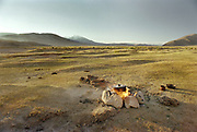 Trekking and camping in a tent in Mongolia.