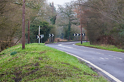 Skidmarks on the grass verge show where a Lamborghini sports car spun off Hadley Road, Enfield into a ditch, yards from a tight left hand bend, indicating that the driver possibly overcorrected after taking the corner too fast. Enfield, March 01 2019.