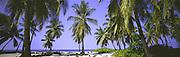 Island of Hawaii, Hawaii, USA<br />