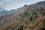 Terraced farmland on the hills near to Raniswara on the 3rd of March 2020, Raniswara, Ghairung, Nepal.