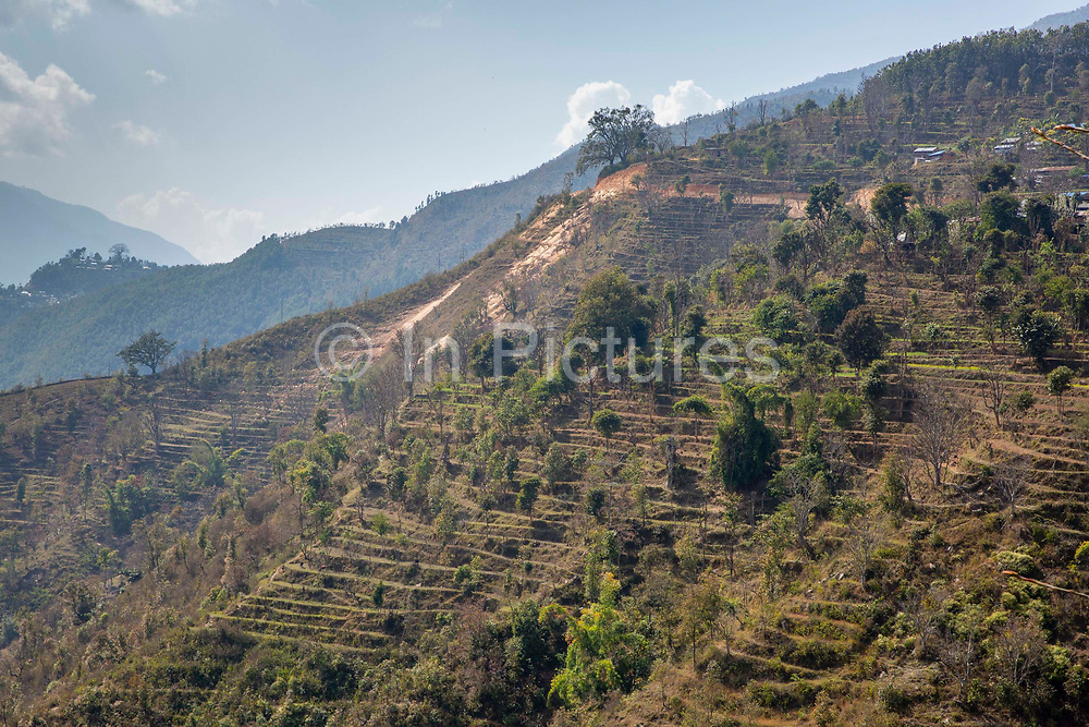 Terraced farmland on the hills near to Raniswara on the 3rd of March 2020, Raniswara, Ghairung, Nepal.