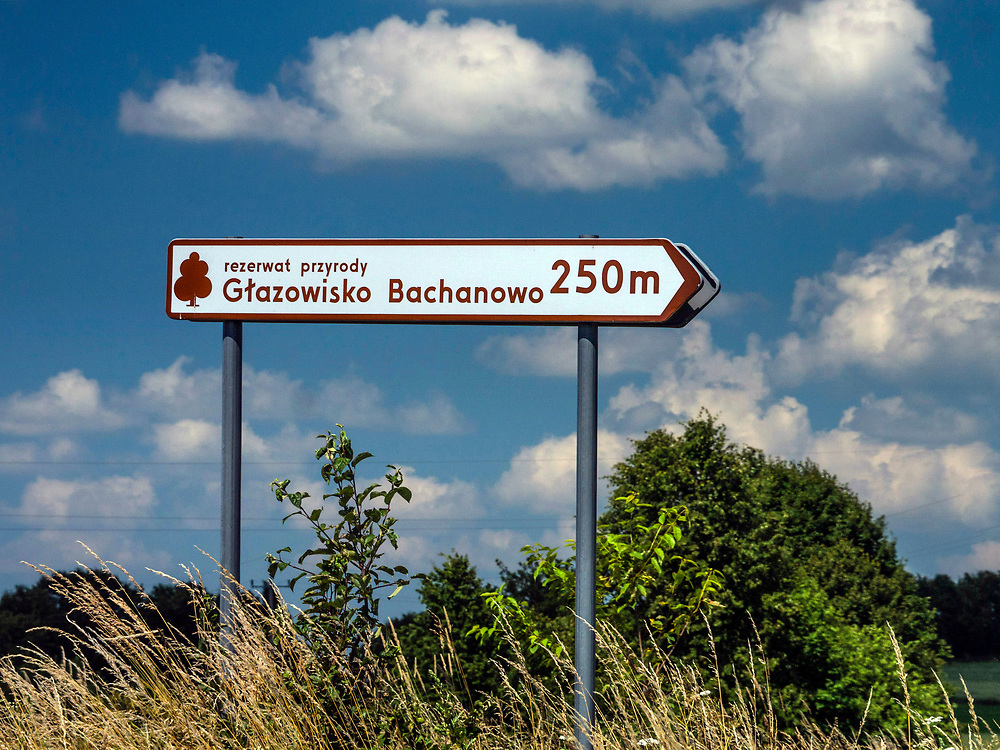 Rezerwat przyrody Głazowisko Bachanowo, Polska<br /> Nature reserve Głazowisko Bachanowo, Poland