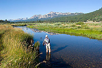 Amy McCormick fly fishing the West Fork of the Carson River in Hope Valley. Lake Tahoe, CA<br />