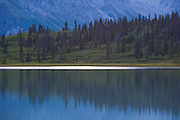 Reflections of black spruce and distant mountain slopes at sunset off a lake in Donoho Basin, Wrangell-St. Elias National Park, Alaska.