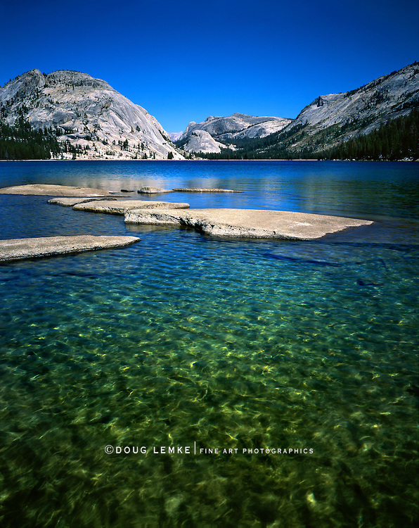 Waist Deep And halfway Across Lake Tenaya On A Beautiful Summers Day At Yosemite National Park, California, USA