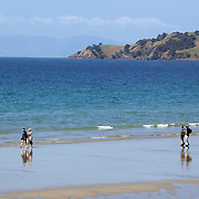 People walk along the waters edge at Onetangi Beach, Waiheke Island, Auckland New Zealand,  2010 Photo Tim Clayton
