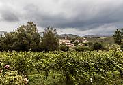 ITALY, Franciacorta area, the countryside around Erbusco