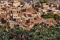 Sultanat d'Oman, gouvernorat de Ad-Dakhiliyah, les monts Hajar, le vieux village en pisé de Al Hamra au pied du Djebel Shams // Sultanate of Oman, Ad-Dakhiliyah Region, village of Al Hamra