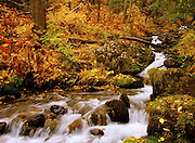 Southcentral Alaska's Falls Creek during autumn.