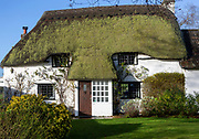Pretty thatched country cottage home with green moss growing on thatch, Cherhill, Wiltshire, England, UK