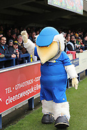Haydon the Womble in front of Oxford United fans during the EFL Sky Bet League 1 match between AFC Wimbledon and Oxford United at the Cherry Red Records Stadium, Kingston, England on 10 March 2018. Picture by Matthew Redman.