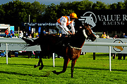 Zoffany Bay ridden by Tom Marquand and trained by Ali Stronge in the Kingstone Press Apple Handicap (Value Rater Racing Club Bath Summer Stayers Series Qualifier) (Class 5) race.  - Ryan Hiscott/JMP - 17/08/2019 - PR - Bath Racecourse - Bath, England - Race Meeting at Bath Racecourse