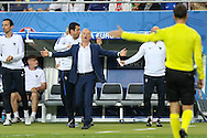 France Manager Didier Deschamps appeals with Referee Mark Clattenburg (England) during the Euro 2016 final between Portugal and France at Stade de France, Saint-Denis, Paris, France on 10 July 2016. Photo by Phil Duncan.