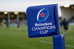 Flag stick during the Heineken Champions Cup match at Kingston Park, Newcastle.