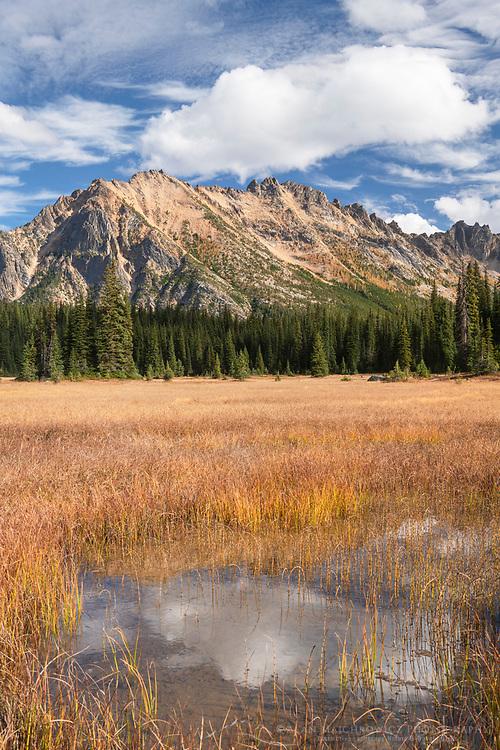 Kangaroo Ridge from Washington Pass meadows, North Cascades Washington