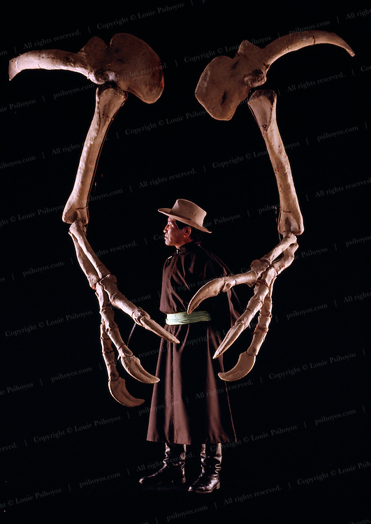 The forearms of Deinocheirus surround Altangerel Perle, a paleontologist with the Ulan Bator State Museum in Mongolia.