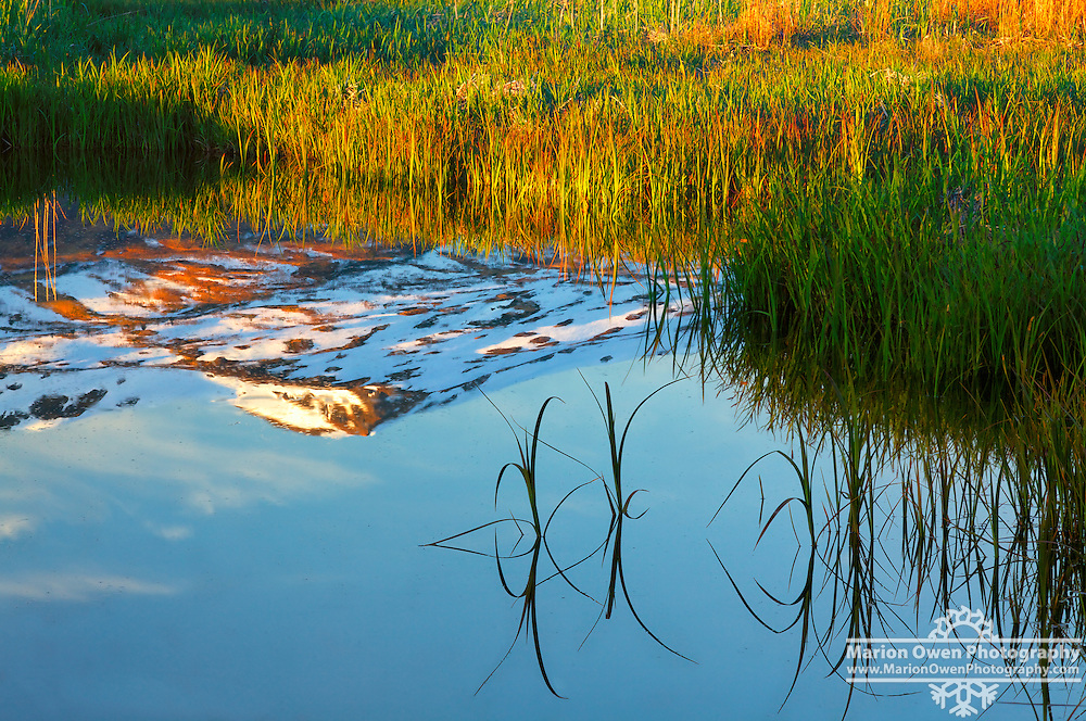Snow-capped mountains reflected in intertidal area of Womens Bay, Kodiak, Alaska during sunrise.