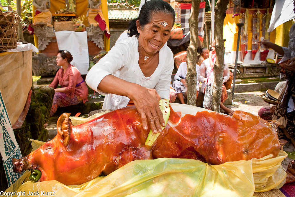 """Apr. 22 - UBUD, BALI, INDONESIA:  A woman prepares a suckling pig after an Odalan ceremony in a family temple in Ubud, Bali, Indonesia. The Odalan ceremony is the """"birthday"""" ceremony for Hindu temples in Bali and are held every 210 days. They are common in Bali. Hindus in Bali are not vegetarians.   Photo by Jack Kurtz/ZUMA Press."""
