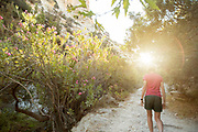 Rear view of female hiker walking on path amidst trees at sunset, Pegeia, Cyprus