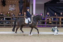 Van Rooij Evi, BEL, King Stayerhof's Jango<br /> CDI Lier 2020<br /> © Hippo Foto - Dirk Caremans<br /> 28/02/2020