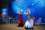 Lisa & Jac's Wedding