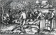 Haymaking. Woodcut from 1582 edition of Pliny's 'Natural History'.