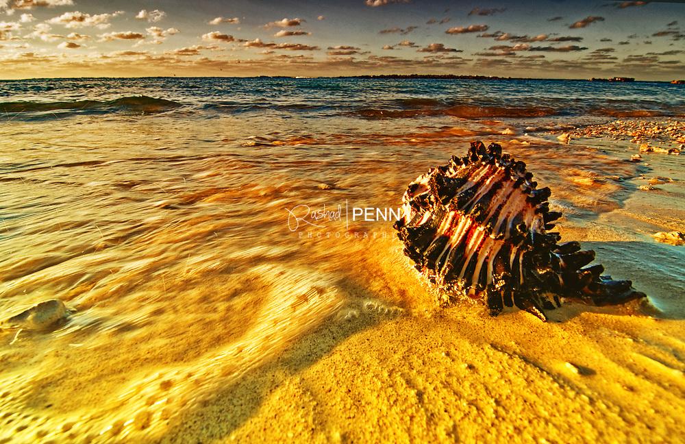 Fine Art Photography - The Bahamian Seascape