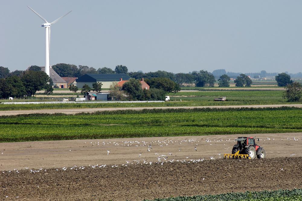Nederland, Pietersbierum, 17 aug 2006     ..Landbouw.  Ploegende trekker. akkerbouw...Foto (c) Michiel Wijnbergh