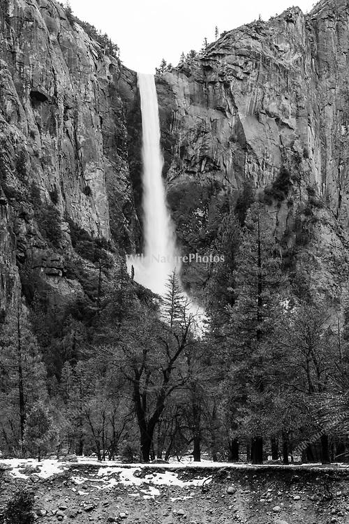 Yosemite Falls in winter, Yosemite National Park, California,  black and white