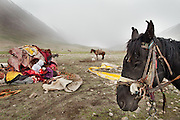 The Khan's wife and daughter waiting while the yurt is being built..Moving with the Khan (chief) family from the Qyzyl Qorum camp to the summer camp of Kara Jylga, on the south side of the wide Little Pamir plateau...Trekking through the high altitude plateau of the Little Pamir mountains (average 4200 meters) , where the Afghan Kyrgyz community live all year, on the borders of China, Tajikistan and Pakistan.