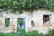 Trees growing through shabby house in ancient village of Peroulades in Northern Corfu, , Greece