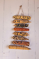 Corn hanging in the kitchen at Hubbell Trading Post, National Historic Site, Ganado, Arizona