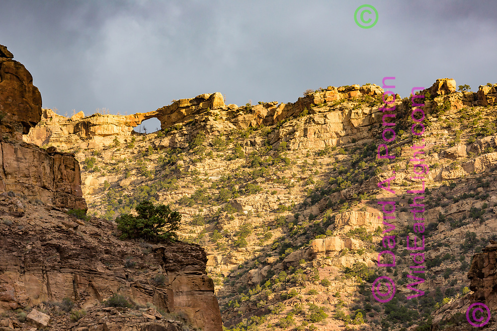 Natural arch on rim of Desolation Canyon opposite Chandler Canyon, © David A. Ponton