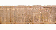 """Anciient Egyptian Book of the Dead papyrus - Spell 30 for stopping the heart betraying the deceased at the tribunal of Osiris, Iufankh's Book of the Dead, Ptolemai period (332-30BC).Turin Egyptian Museum. White Background<br /> <br /> the spell reads ' Stand not against me as a witness, oppose me not in the Council, act not against me before the gods, outweigh me not before the great God, the Lord os the West""""<br /> <br /> The translation of  Iuefankh's Book of the Dead papyrus by Richard Lepsius marked a truning point in the studies of ancient Egyptian funereal studies. .<br /> <br /> If you prefer to buy from our ALAMY PHOTO LIBRARY  Collection visit : https://www.alamy.com/portfolio/paul-williams-funkystock/ancient-egyptian-art-artefacts.html  . Type -   Turin   - into the LOWER SEARCH WITHIN GALLERY box. Refine search by adding background colour, subject etc<br /> <br /> Visit our ANCIENT WORLD PHOTO COLLECTIONS for more photos to download or buy as wall art prints https://funkystock.photoshelter.com/gallery-collection/Ancient-World-Art-Antiquities-Historic-Sites-Pictures-Images-of/C00006u26yqSkDOM"""