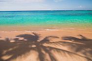 Palm tree shadows on Lanikai Beach, Kailua Bay, Oahu, Hawaii.