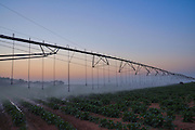 Computerized Mobile Watering System at sunrise Photographed in Israel, Negev, Kibbutz Dorot