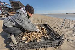Lynne Fox Sorting Oyster Trays