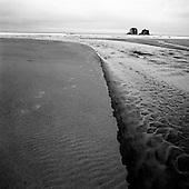 Oregon Coast Landscape Black and White