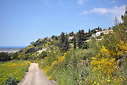Israel, Carmel Mountain Range, Ein Hod, Artist's village.