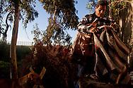 Tijuana 2015.<br /> Every morning Juan has to hide his blanket. Juan lives next to the border, in a hut built by him. Since two months he is in Tijuana. He lived in the US, then, to prevent the government took away his daughter because of her economic condition, he returned to Mexico with her. Now his daughter is of age and two months ago she get back to the US, Juan has no papers, so he studies everyday the way to pass the border and reach his daughter.<br />  <br /> Juan vive a fianco della frontiera, in una capanna costruita da lui. Da due mesi si Trova a Tijuana. Prima viveva negli USA poi, per evitare che il governo gli togliesse la figlia a causa della sua condizione economica, e' tornato in Messico. Ora sua figlia è maggiorenne e due mesi fa è tornata negli USA, Juan non ha i documenti e ogni giorno studia la frontiera per poter raggiungere la figlia.