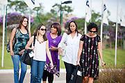 Belo Horizonte_MG, 16 de fevereiro de 2011. .PEGN / Mulheres Empreendedoras..Documentacao do Projeto 10.000 Mulheres do Banco Goldman Sachs teve inicio em 2008 e preve, em 5 anos, investir U$ 100 milhoes na formacao de mulheres empreendedoras de paises em desenvolvimento. No Brasil, a Fundacao Dom Cabral e a responsavel pelo projeto e, 500 mulheres, donas de micro e pequenos negocios foram escolhidas para o programa de gestao empresarial e estruturacao de um plano de negocios. A documentacao fotografica e feita com 5 mulheres que participa do curso em Belo Horizonte...Na foto, as empresarias, Leticia Alvim Guimaraes (Loira), do negocio de comida mexicana, Tacomtudo, Cleonice dos Santos Pinto (Morena de branco), da empresa Opniao Formada Comunicacao Ltda, Mariane Santos Sampaio(Vestido preto), da empresa Trama Atelier, Rosangela das Gracas Costa Matos (Roxo), do  Instituto de Beleza Zaza e Rosani Aparecida de Souza Lopes (camiseta), da Bufalo Ferramentas Ltda...Contato:..Rosangela.(31) 3434 7656.zazacostamatos@hotmail.com..Rosani.(31) 8611 0564.rosanibufalo@yahoo.com.br ..Cleonice.(31) 9675 8701.cleonice@opiniaoformada.com.br..Mariane.(31) 3433 5546 / 8832 7631.trama.bolsas@gmail.com.tramabolsas.blogspot.com..Leticia.tacomtudobh@hotmail.com..Foto: NIDIN SANCHES / NITRO