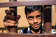 Portrait of an Indian boy in Munnar, Western Ghats Mountains, Kerala, India