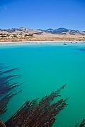 San Simeon State Beach, San Luis Obispo County, California, USA