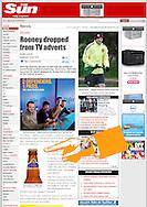 Bottle of Tiger Beer / The Sun / October 2010
