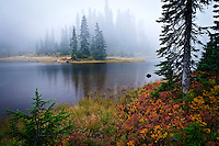 Junction Lake shoreline in autumn, Indian Heaven Wilderness, Gifford Pinchot National Forest, Cascade Mountain Range, Washington state, USA